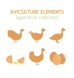 Aviculture set Poultry industry vector image