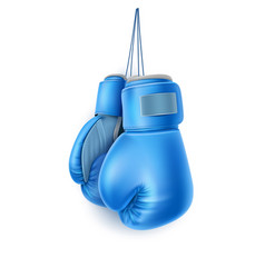 blue pair boxing glove on lace realistic vector image