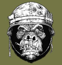 gorilla soldier vector image