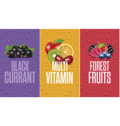 Juice drops with black currant forest fruits vector