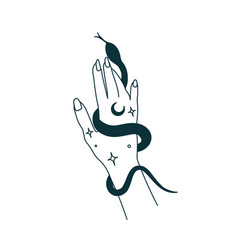 mystical witch hands with snake outline tattoo vector image