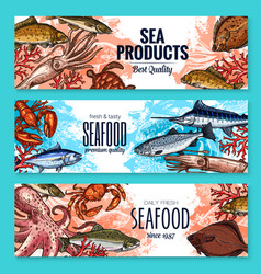 Sketch banners for seafood fish food market vector