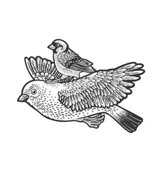 bird ride while flying line art sketch vector image