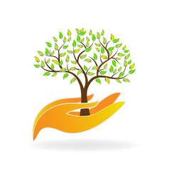 caring hands with environmental tree icon vector image