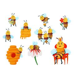 Cartoon bee and honeybee family set isolated vector