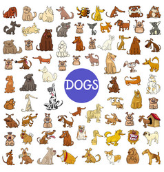 cartoon dog characters huge set vector image