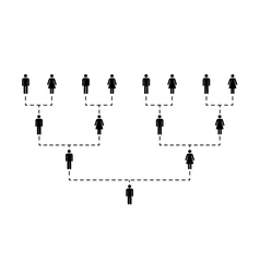 Family tree of several generations on white vector