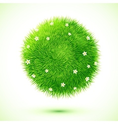 Green fluffy grass ball with chamomiles vector image