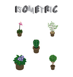 Isometric houseplant set of flowerpot grower vector