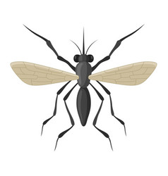 mosquito insect icon bloodsucking and sting pest vector image
