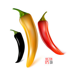 Set black red amber peppers isolated on white vector