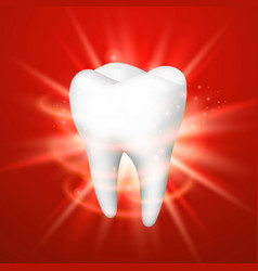 tooth on a red background vector image