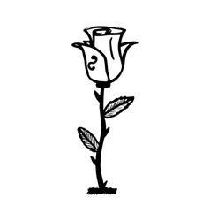 Rose sketch black outline on white background vector image vector image