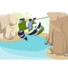 Scout raccoon mountaineer rope scout crossing vector