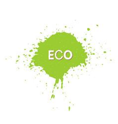 eco fresh vegan bio raw organic green design vector image