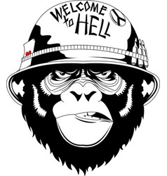 Monkey in military helmet vector