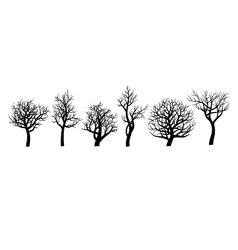 Set of trees sihlouette on white background vector image