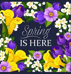 Springtime flowers bunch greeting card vector
