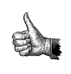 symbol thumb up hand gesture sketch vector image vector image