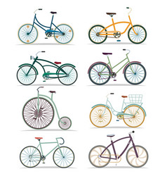 bicycle set in flat design vector image