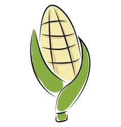 corn hand drawn design on white background vector image
