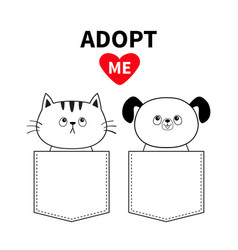 cute cat dog sitting in pocket adopt me red vector image