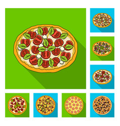 Different pizza flat icons in set collection for vector