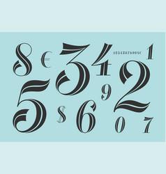 numbers font classical elegant font vector image