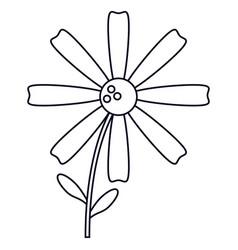 Daisy flower decoration line vector