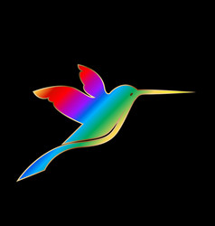 hummingbird on a black background design vector image