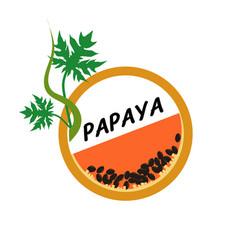 papaya fruit icons flat style vector image