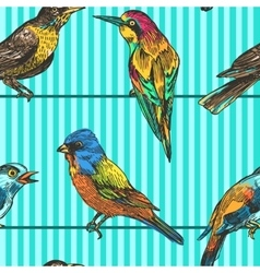 seamless pattern birds vector image vector image