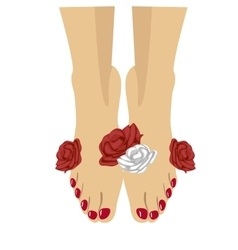 woman feet with red pedicure and roses around vector image