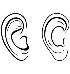 Human ear vector image vector image