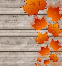 Autumn leaves maple on wooden texture vector