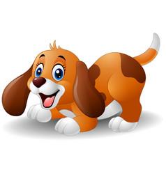 cartoon playful puppy vector image