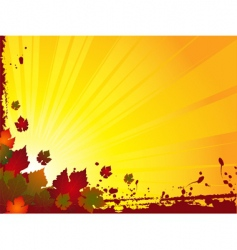grunge autumn background vector image
