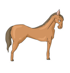 horse on white background cute cartoon vector image
