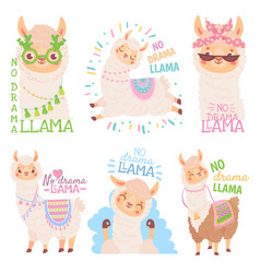 no drama llama funny llamas or cute alpacas quote vector image