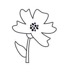 periwinkle flower decoration line vector image