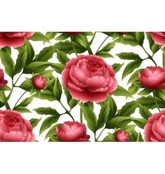 Seamless pattern with peony flowers vector