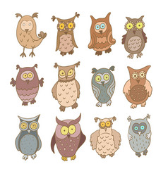 Set of cute cartoon owls isolated on white vector