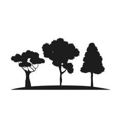 Silhouette trees forest branch foliage botanic vector