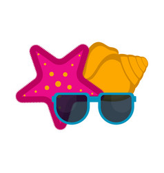 sunglasses with a sea star and a seashell vector image
