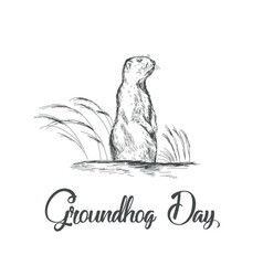 happy groundhog day sketched vector image vector image