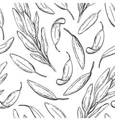 Sage drawing seamless pattern Isolated vector image