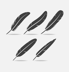 Feather Black Icon vector image vector image
