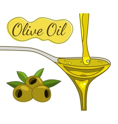Olive oil hand drawn vector
