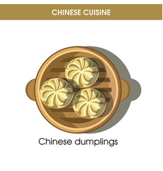 Chinese cuisine meat dumplings traditional dish vector
