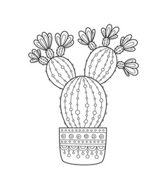 Doodle coloring book page cacti antistress vector